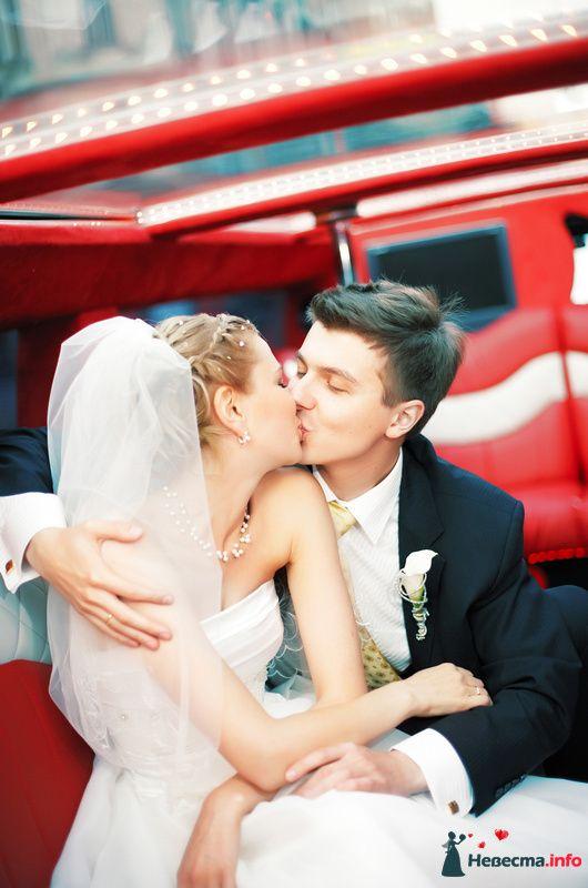 Фото 127815 в коллекции Мои фотографии - Studio-Wedding - фотограф
