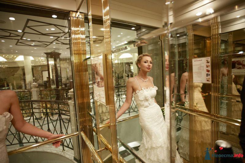 Фото 127830 в коллекции Мои фотографии - Studio-Wedding - фотограф
