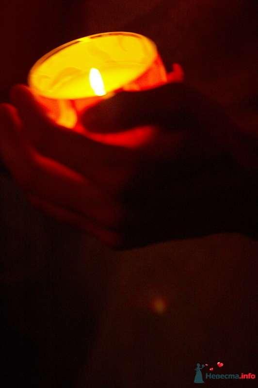 """Фото 125035 в коллекции Свадьба Сергея и Даши - """"Просто PRаздник"""" Юлии Давыдовой - шоу-программа"""