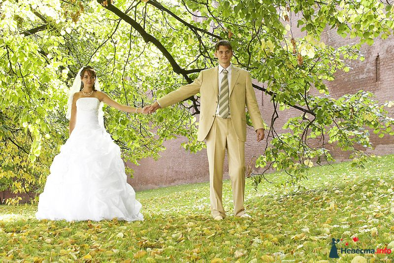 Фото 125523 в коллекции Мои фотографии - Студия свадебной фото и видео съемки ''Кадр36''