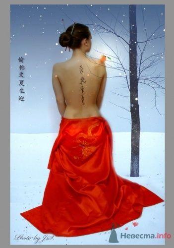 Зимний Фрукт - фото 11529 Студия Творческой Фотографии