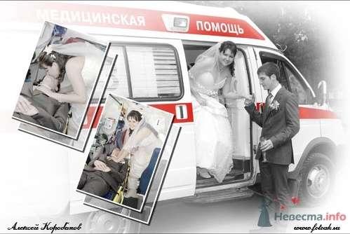 Фото 14563 в коллекции Мои фотографии - Фотостудия Алексея Коробанова