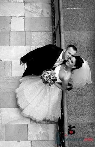 Фото 59446 в коллекции наша Свадьба или как Это было... - Lina