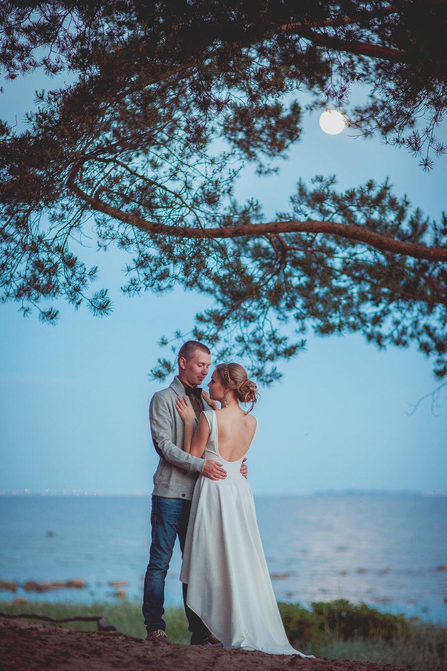 Фото 2574445 в коллекции Романтика белых ночей - Света Кассина - фотограф