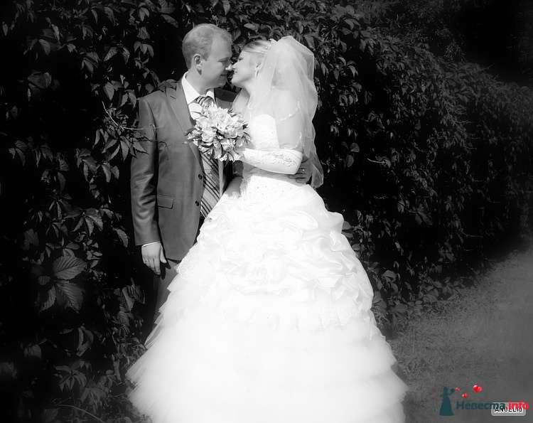 Фото 127014 в коллекции Свадьба - Невеста01