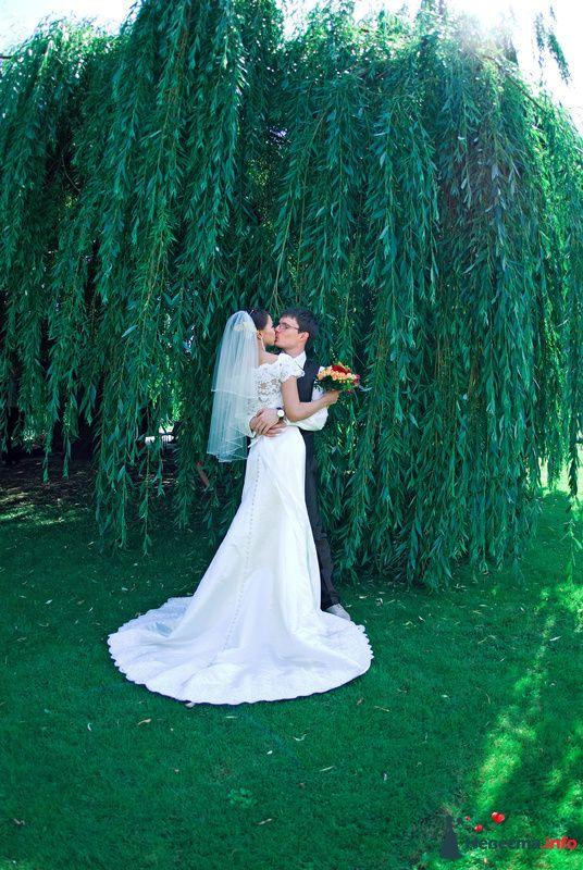Фото 127531 в коллекции Свадьбы - Свадебный фотограф Трейго Любовь