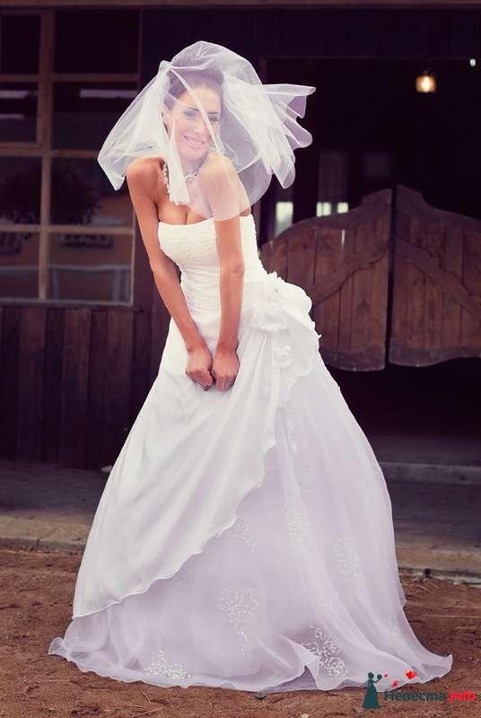 Фото 127549 в коллекции Свадьбы - Свадебный фотограф Трейго Любовь