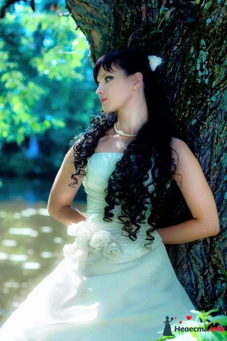 Фото 127221 в коллекции Свадебное портфолио - Анна Калашникова
