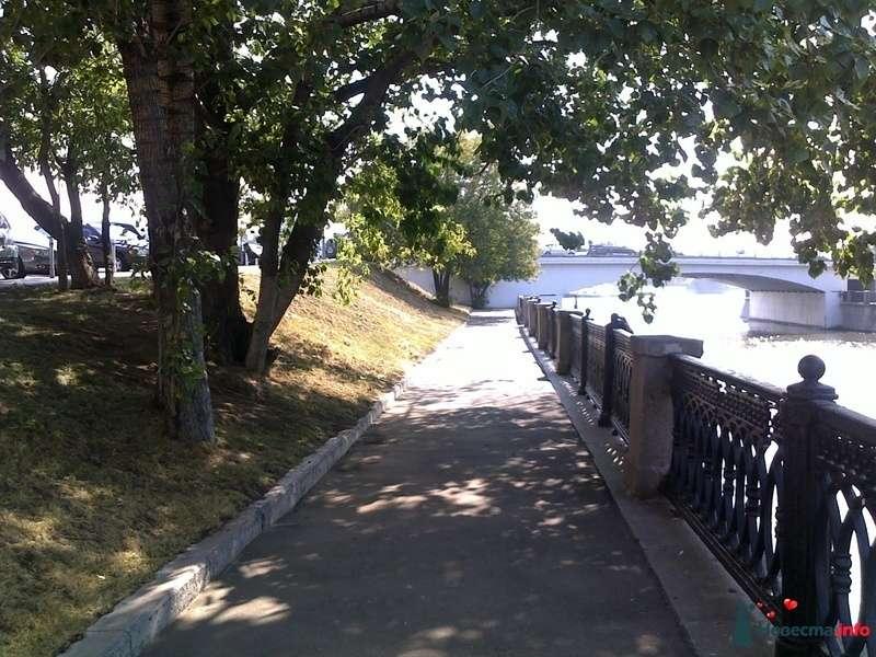 Фото 128357 в коллекции Прогулка - Sentyabrina