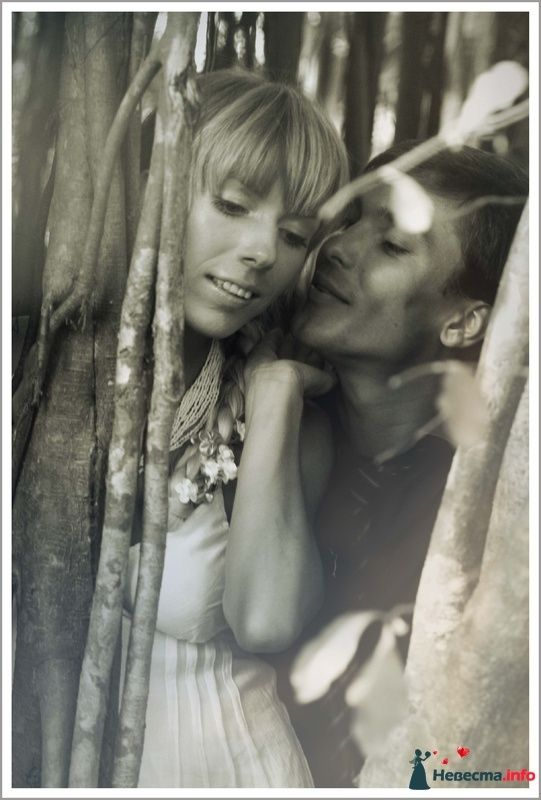Фото 129319 в коллекции wedding
