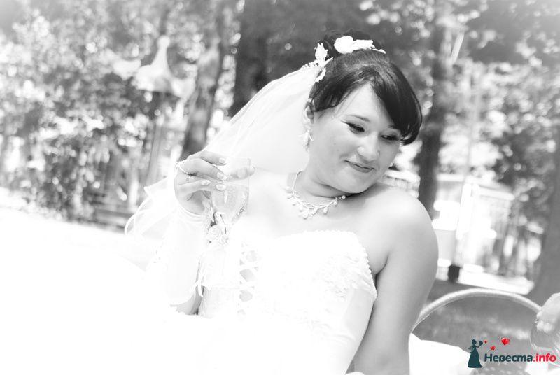 Фото 129513 в коллекции Свадебный - Фотограф Виктория Боголюбова