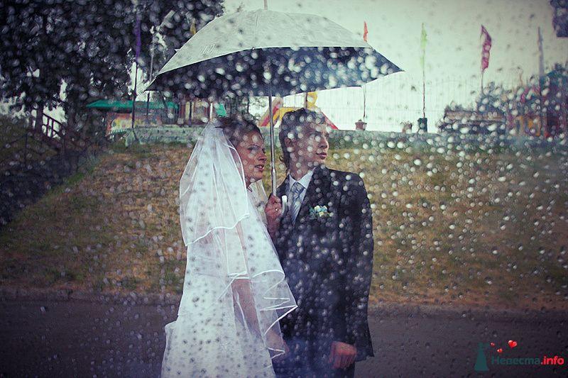 Фото 129580 в коллекции Свадебная фотография от photoAMplua
