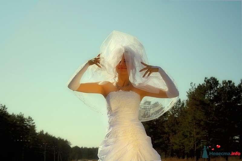 Фото 129596 в коллекции Свадебная фотография от photoAMplua - photoAMplua
