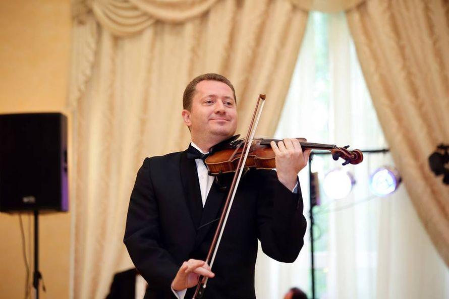 Скрипач на праздник (0935681904) Игорь Коцюбинский.  - фото 1292569 Скрипач Игорь Коцюбинский