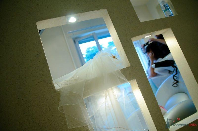 Фото 40069 в коллекции Wedding by Svetlana Alexseeva - Rainbow
