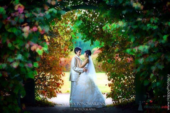 Сказка - фото 56937 Rainbow