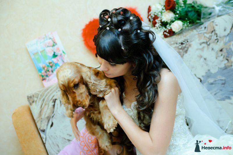 Я с Бетти - фото 88654 Rainbow