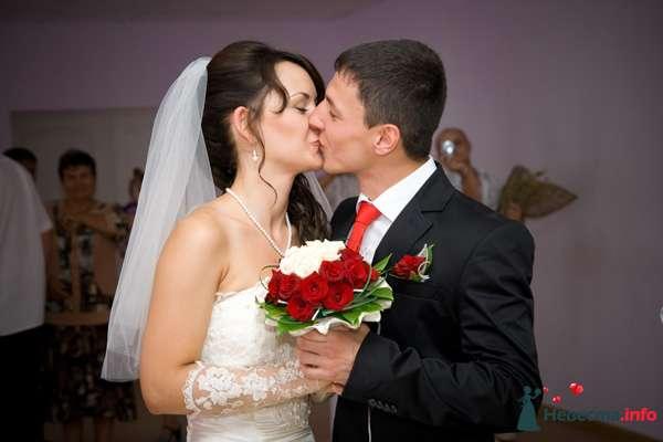 Фото 131022 в коллекции Момент - Свадебный фотограф - Александра-Ал