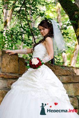 Фото 131029 в коллекции Момент - Свадебный фотограф - Александра-Ал
