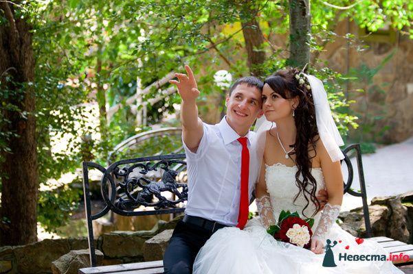 Фото 131032 в коллекции Момент - Свадебный фотограф - Александра-Ал