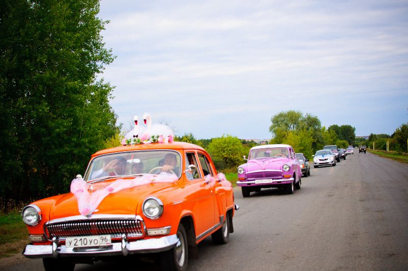 "Оранжевая и розовая ""Волги"" на фоне свадебного кортежа, зелени лугов. - фото 1324216 Ретро-авто - аренда авто на свадьбу"