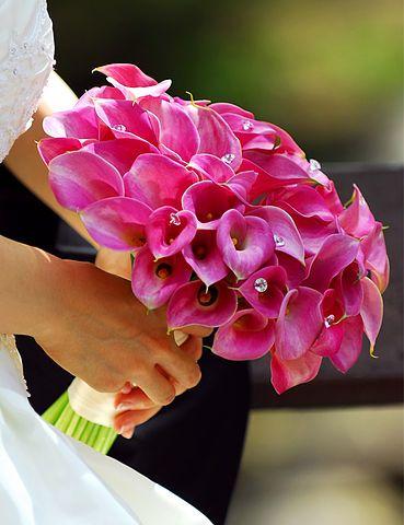 Фото 2689275 в коллекции Мои фотографии - Галерея цветов - Свадебное оформление