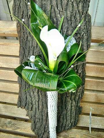 Фото 2689303 в коллекции Мои фотографии - Галерея цветов - Свадебное оформление