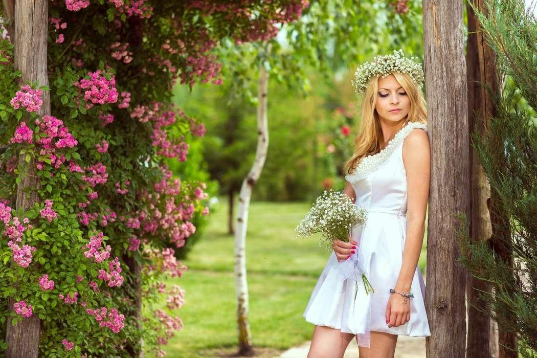 Фото 5673377 в коллекции Портфолио - Фотограф Евгения Мотасова