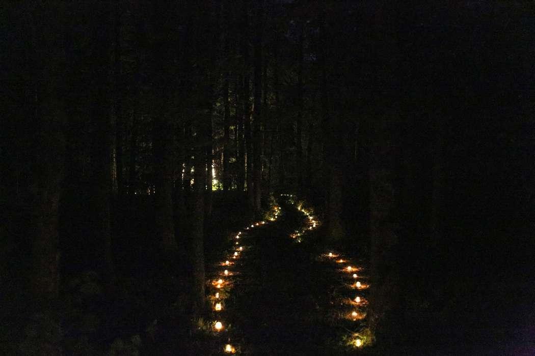 """Фото 9569510 в коллекции Портфолио - Студия свадебной режиссуры """"Make a wish"""""""