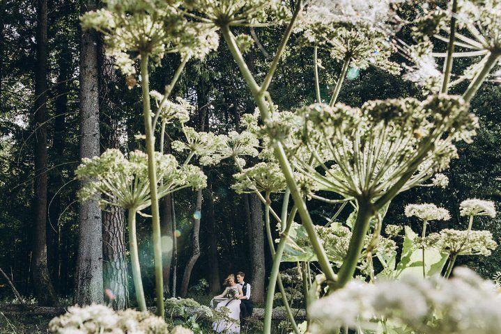 """Фото 19092414 в коллекции Портфолио - Студия свадебной режиссуры """"Make a wish"""""""