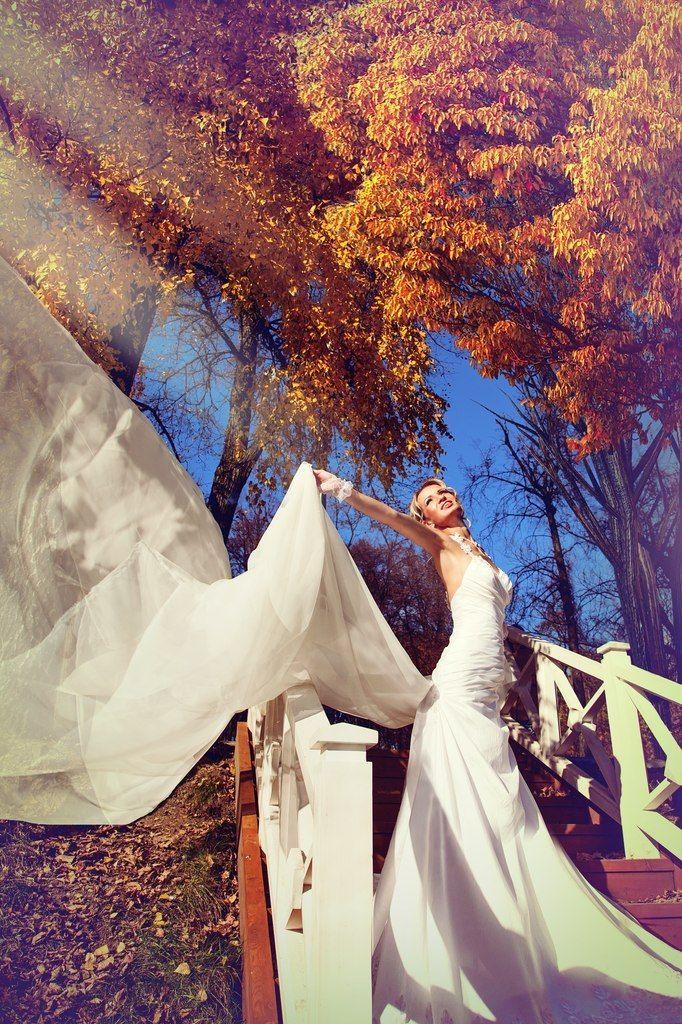 На крыльях любви - фото 1428661 Studio-iv - фото и видеосьёмка