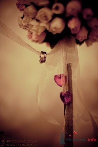 Свадебная фотография - фото 11824 Фотограф Филонова Ольга