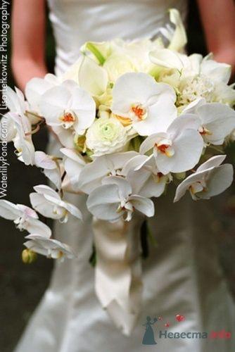 Фото 20061 в коллекции к свадьбе - Невеста01