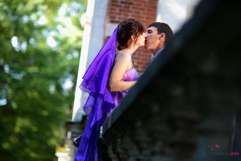 Жених и невеста целуются в парке - фото 45754 Невеста01