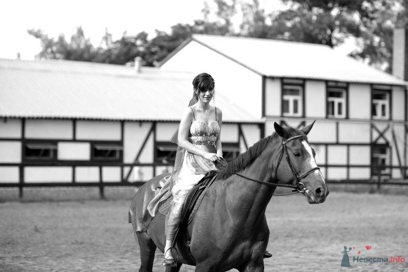 Невеста едет верхом на лошади - фото 45761 Невеста01