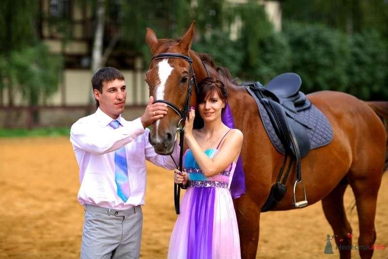 Жених и невеста стоят возле лошади - фото 45764 Невеста01