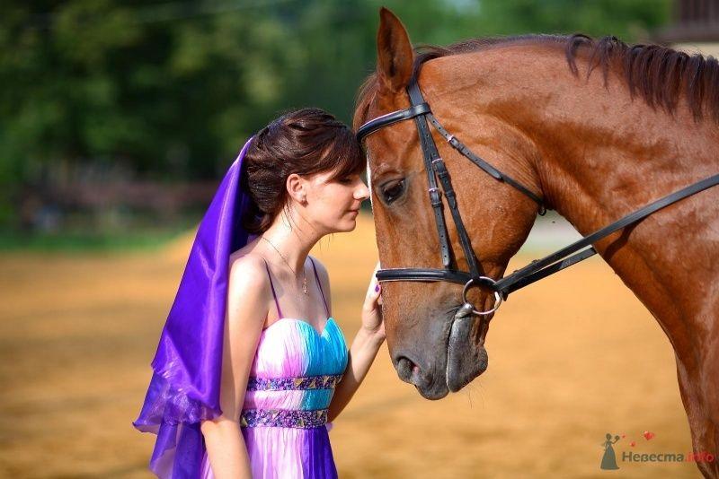 Невеста в ярком сиреневом платье склонилась возле лошади - фото 45767 Невеста01