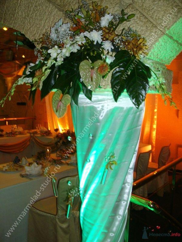 Фото 25759 в коллекции Оформление свадьбы тканями