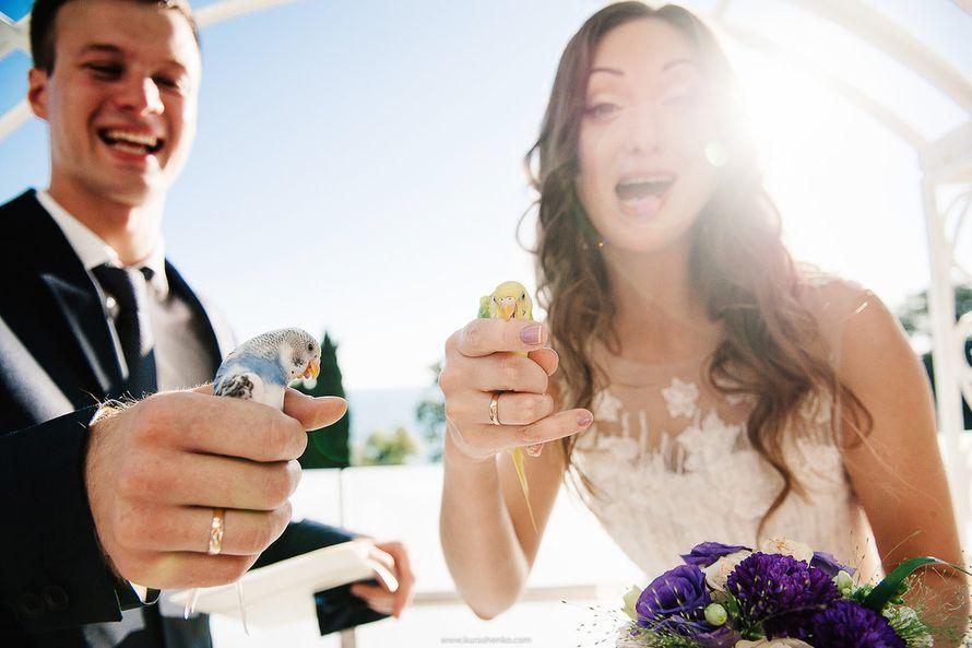Фото 13124720 в коллекции Свадьба в Хаятт Ридженси Сочи - Хаятт Ридженси Сочи - отель