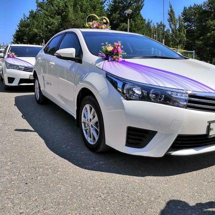Кортеж из автомобилей Toyota Corolla