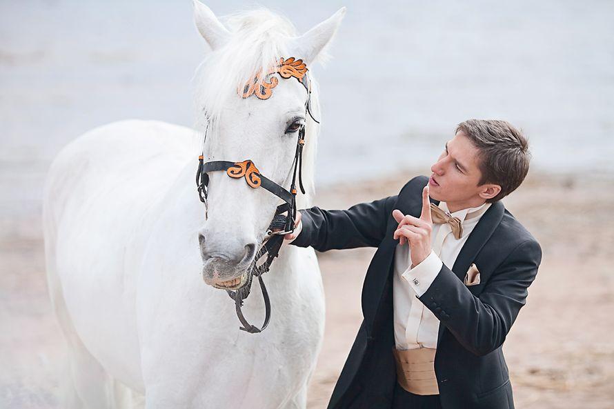 Андрей  и его белый конь) Финский залив СПб - фото 2375374 Фотограф Анна Лемеш