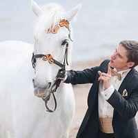 Андрей  и его белый конь) Финский залив СПб