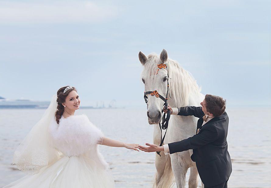 Айна и Андрей. Финский залив СПб - фото 2375376 Фотограф Анна Лемеш