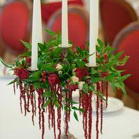 красная винная бордовая марсала
