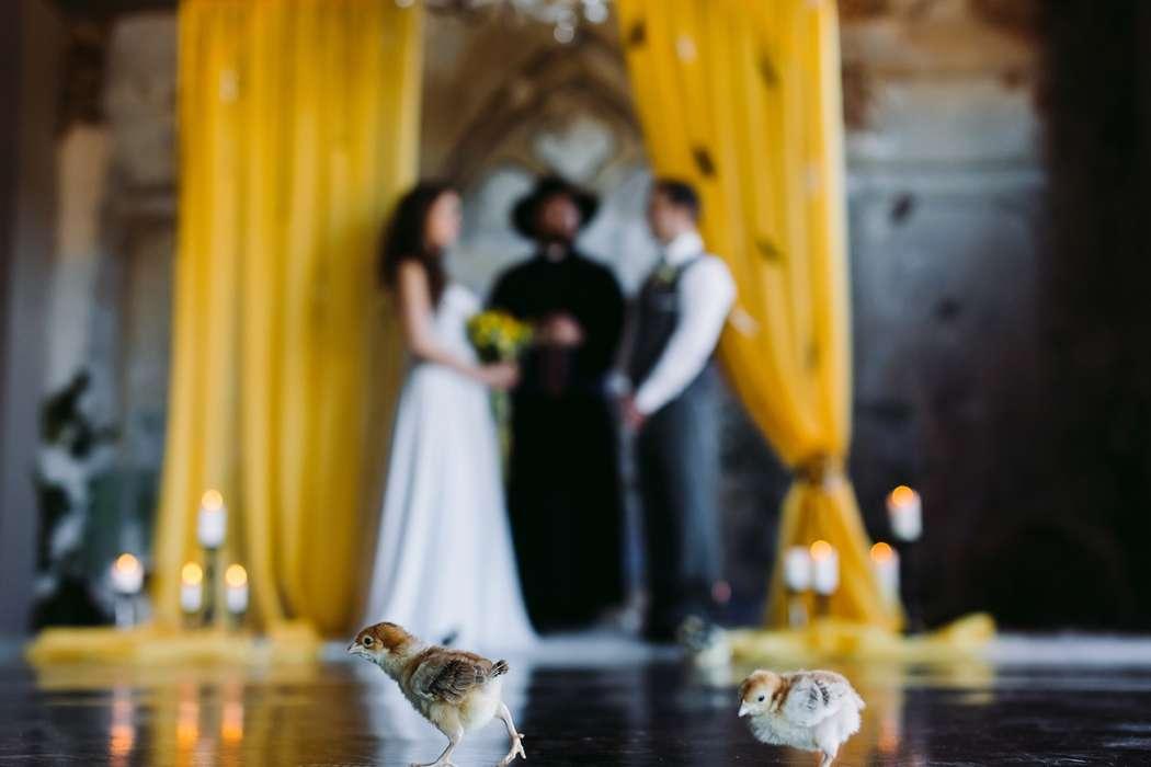 """желтая черная свадьба выездная регистрация - фото 6106677 Студия флористики и декора """"Глориоза"""""""