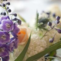 синяя фиолетовая персиковая свадьба