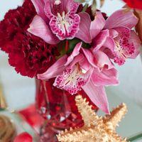 розовые орхидеи стол молодых