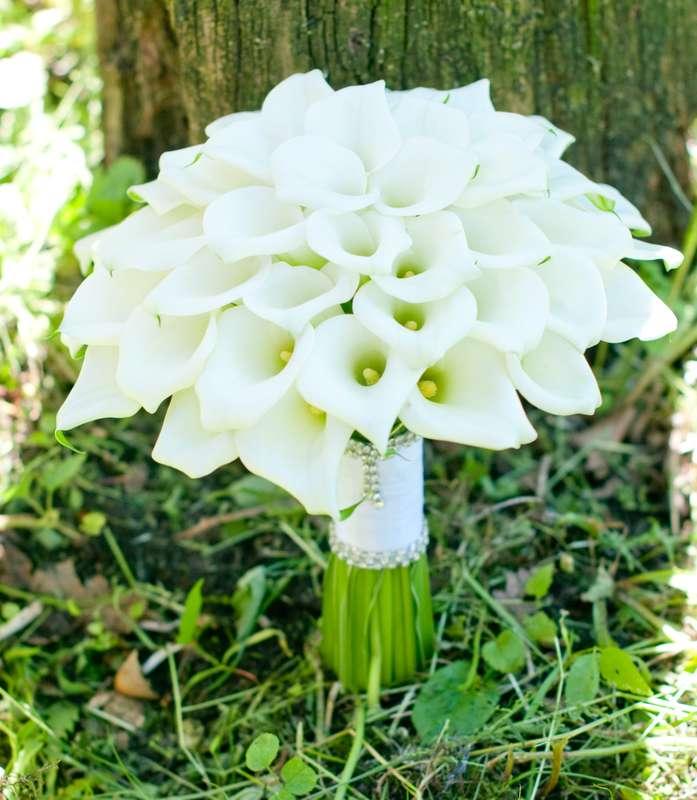 """Белый букет из калл - фото 16311438 Студия флористики и декора """"Глориоза"""""""