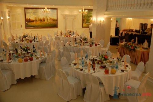 Свадьба в Зале Торжеств