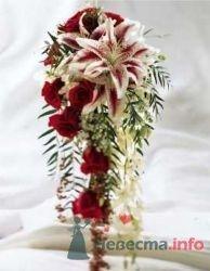 Фото 19764 в коллекции Букет невесты и бутоньерка - Невеста01